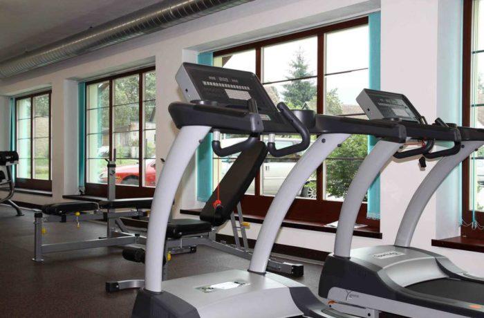 Mini fitness